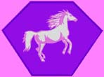 Kid size pink cape, purple hexagon, with a white and pink Horse